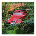 2cv_jungle_25x25cm_300